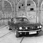 Mustang 1965.